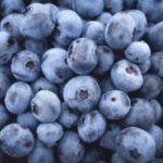 Heidelbeere - Super Food