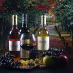 Wein Übersicht