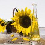 Rapsöl oder Sonnenblumenöl - Beides optimal oder nicht?