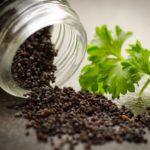 Petersiliensamenöl – in der Küche neu aber gigantisch
